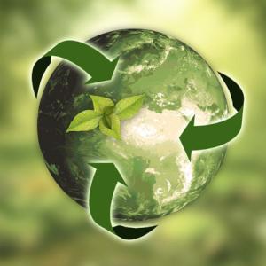 I pilastri della sostenibilità